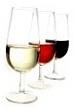 vins, production, viticole,dégustation de vins, cépages,oenologie,oenologue,terroir,blanc,rouge,rosé,terre,bodega,Guadix,Grenade,Alpujarras