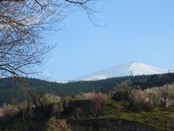 proche du gite : Alpujarras